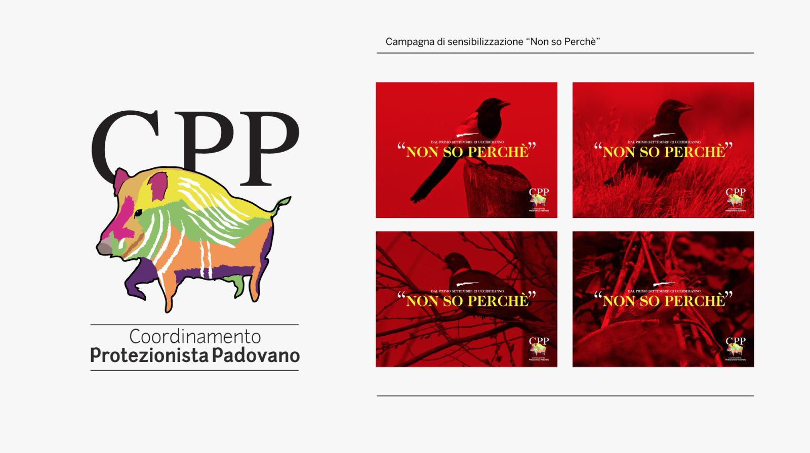 CPP_HolicLab_immagine_coordinata_7