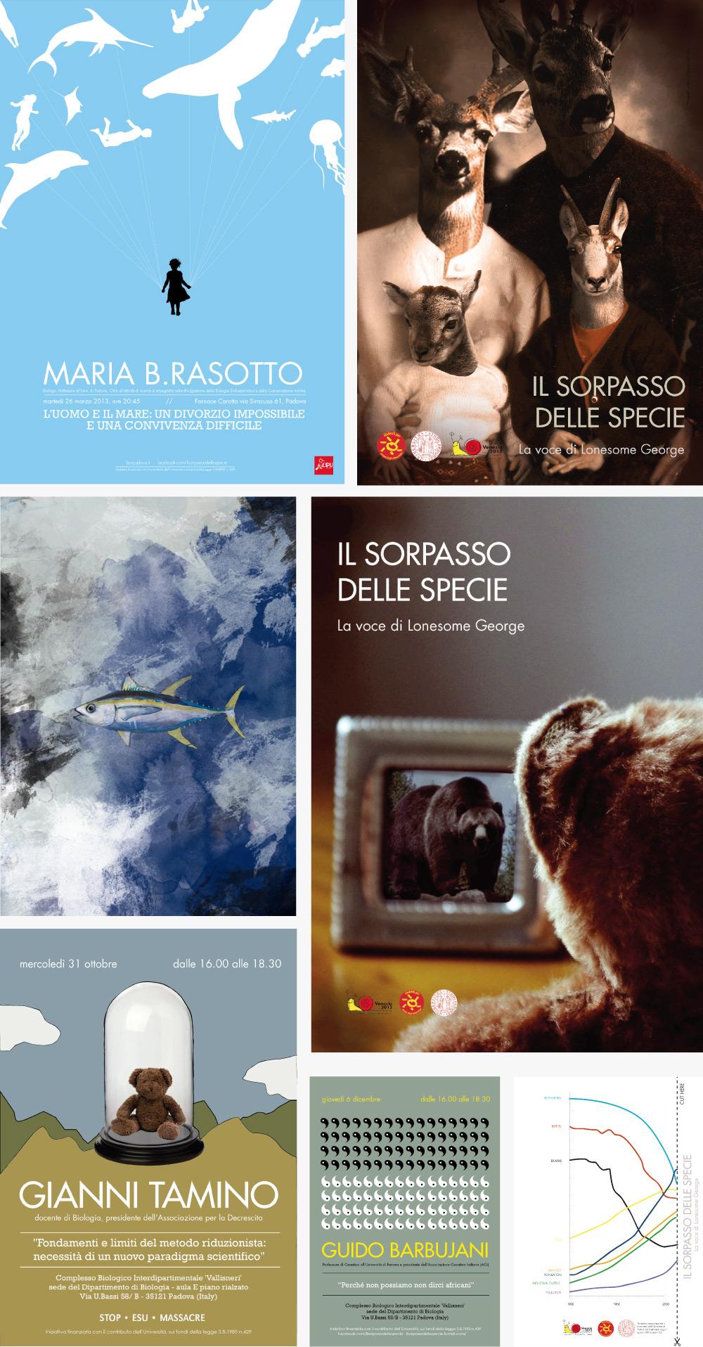 holic_immagine_coordinata_il_sorpasso_delle_specie